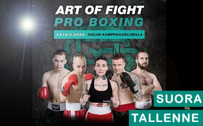 Art of Fight – Pro Boxing
